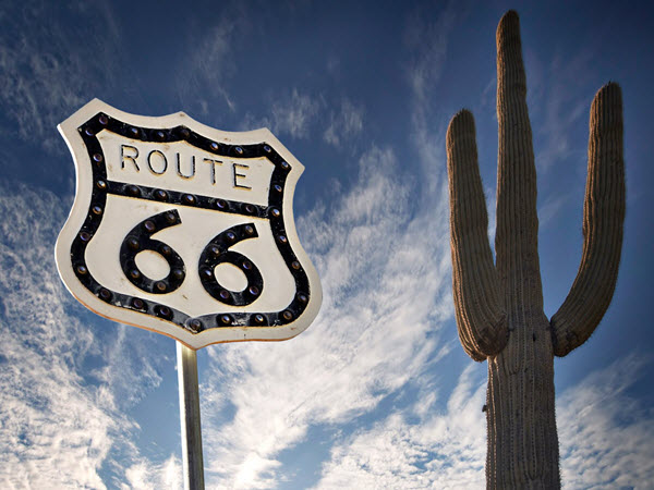 USA - route 66 sign next to a giant cactus