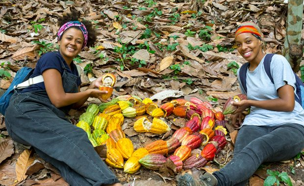 Grenada Chocolate Fest 2018/Be a farmer for the day