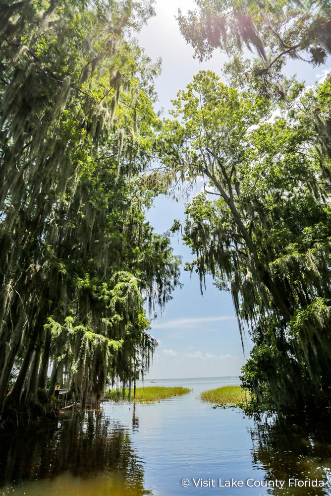 1 Lake County Florida Dora Canal