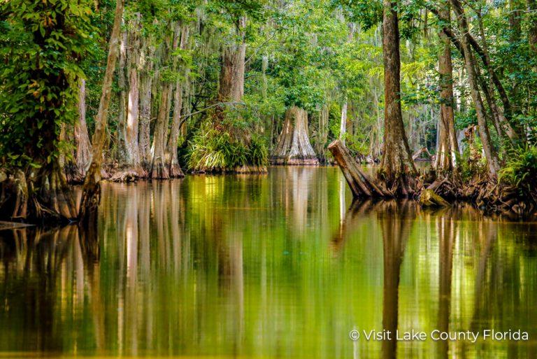 1 Lake County Florida Lake