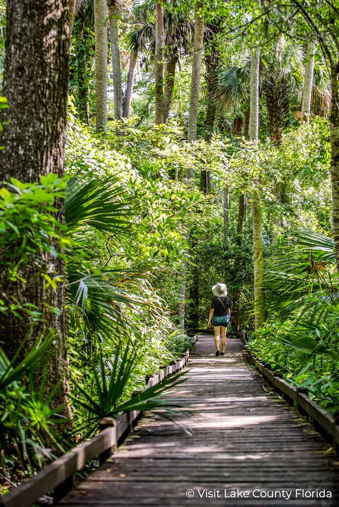 1 Lake County Florida Walking