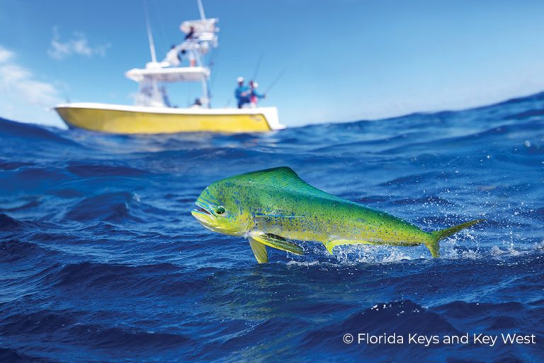 FK-330 Florida Keys 25Jun21