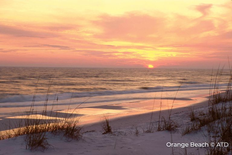 Orange Beach Alabama Credit ATD